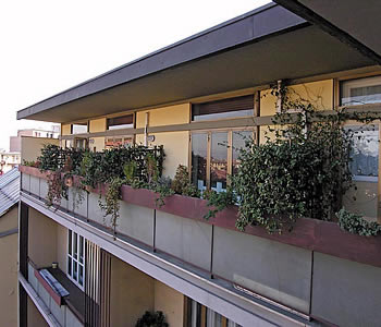 Bed and breakfast Firenze - Bed and breakfast Residenza Giulia