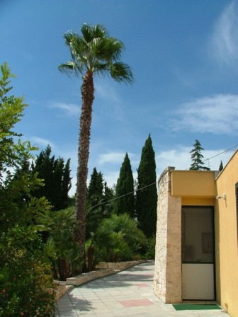Bed and breakfast Lecce - Bed and breakfast Villa Djerba