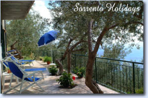 Apartamenti-ville in affitto<br> 3 stelle in Massa Lubrense - Apartamenti-ville in affitto<br> Sorrento Holidays (T303)