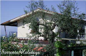 Apartamenti-ville in affitto<br> 3 stelle in Massa Lubrense - Apartamenti-ville in affitto<br> Sorrento Holidays (T326)