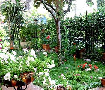 Bed and breakfast Roma - Bed and breakfast A Casa di Patrizia