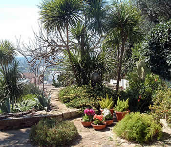 Bed and breakfast Matino - Bed and breakfast Sosta a Levante