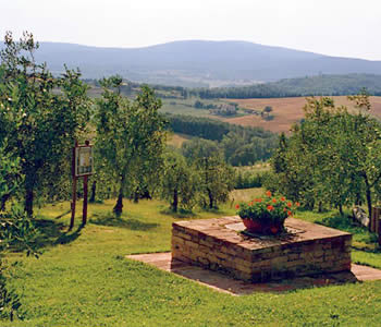 Bed and breakfast Monteriggioni - Bed and breakfast L'Aia Country Holidays