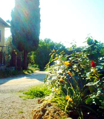 Bed and breakfast San Gimignano - Bed and breakfast Locanda Viani